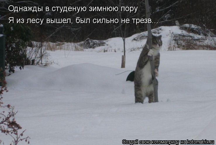 Котоматрица: Однажды в студеную зимнюю пору Я из лесу вышел, был сильно не трезв...