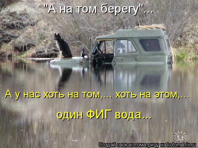"""Котоматрица: """"А на том берегу""""... А у нас хоть на том,... хоть на этом,...   один ФИГ вода..."""