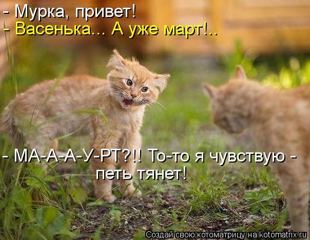 Котоматрица: - Мурка, привет! - Васенька... А уже март!.. - МА-А-А-У-РТ?!! То-то я чувствую -  петь тянет!