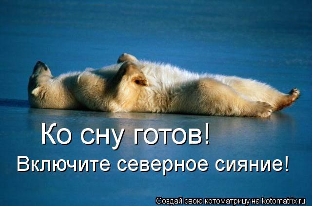 Котоматрица: Ко сну готов! Включите северное сияние!