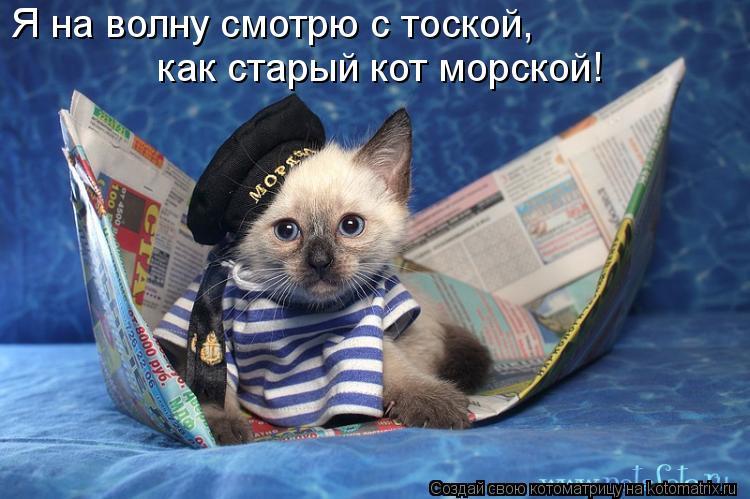 Котоматрица: Я на волну смотрю с тоской, как старый кот морской!