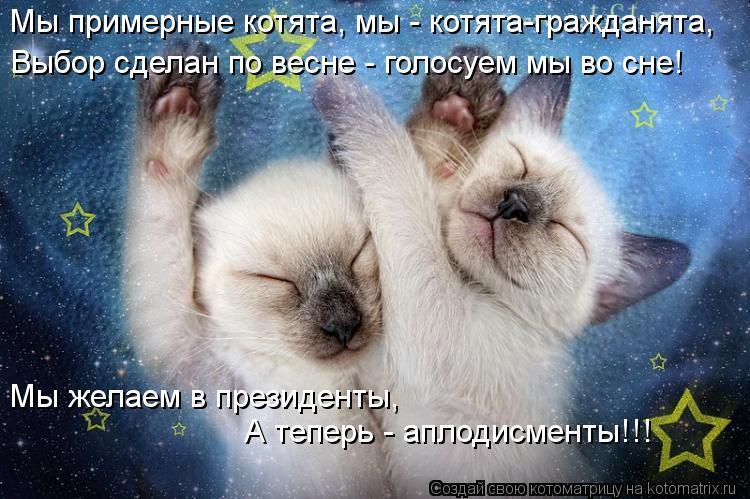 Котоматрица: Мы примерные котята, мы - котята-гражданята, Выбор сделан по весне - голосуем мы во сне! Мы желаем в президенты, А теперь - аплодисменты!!!