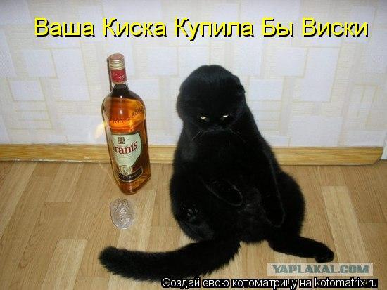 Котоматрица: Ваша Киска Купила Бы Виски