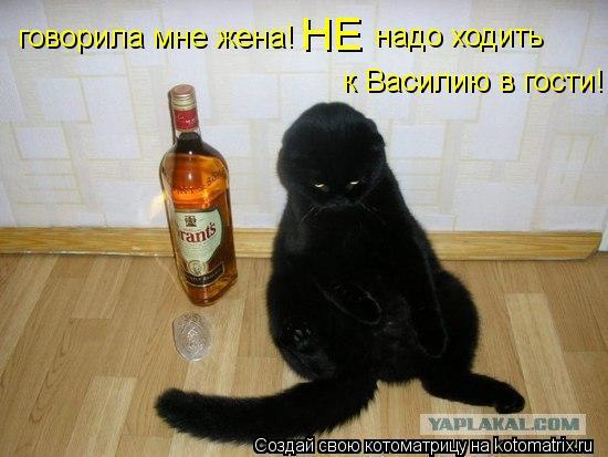 Котоматрица: НЕ надо ходить  к Василию в гости! говорила мне жена!