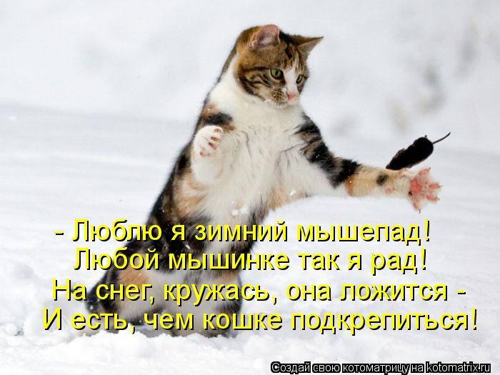 Котоматрица: - Люблю я зимний мышепад! Любой мышинке так я рад! На снег, кружась, она ложится -  И есть, чем кошке подкрепиться!