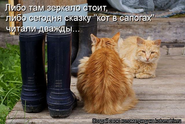 """Котоматрица: Либо там зеркало стоит, либо сегодня сказку """"кот в сапогах""""  читали дважды..."""