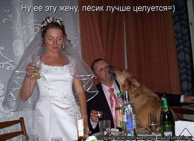 Котоматрица: Ну её эту жену, пёсик лучше целуется=)