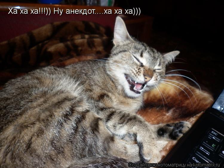 Котоматрица: Ха ха ха!!!)) Ну анекдот....ха ха ха)))