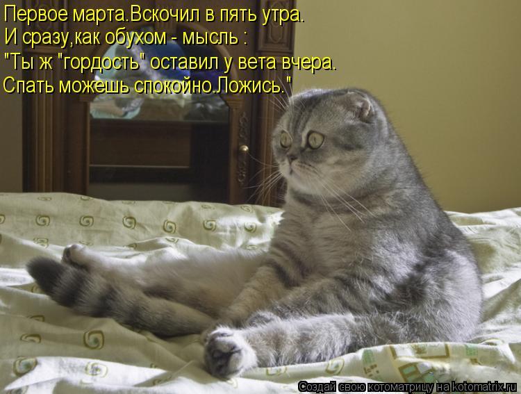 """Котоматрица: Первое марта.Вскочил в пять утра. И сразу,как обухом - мысль : """"Ты ж """"гордость"""" оставил у вета вчера. Спать можешь спокойно.Ложись."""""""