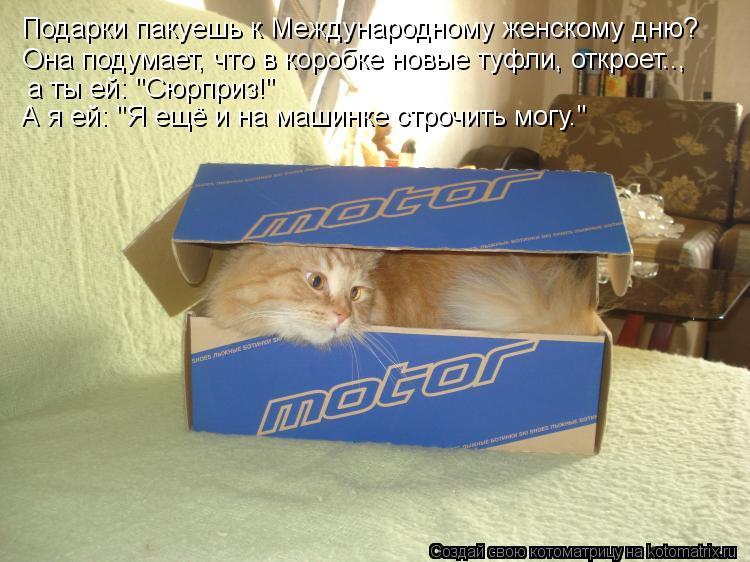 """Котоматрица: Подарки пакуешь к Международному женскому дню? Она подумает, что в коробке новые туфли, откроет..,  а ты ей: """"Сюрприз!""""  А я ей: """"Я ещё и на машинк"""