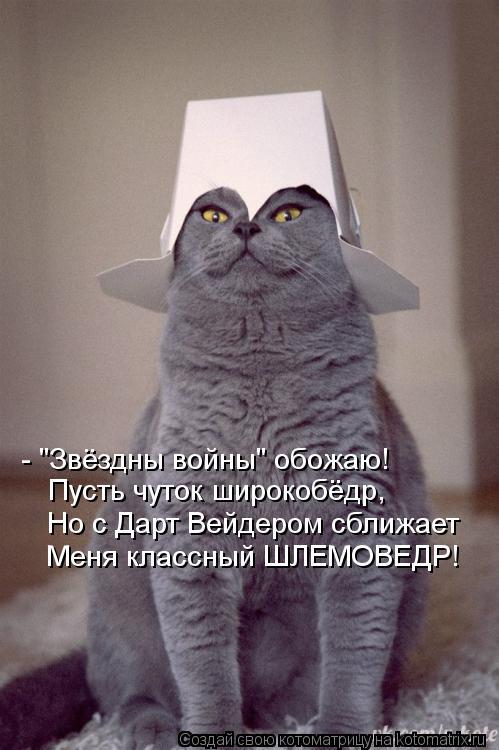 """Котоматрица: - """"Звёздны войны"""" обожаю! Пусть чуток широкобёдр, Но с Дарт Вейдером сближает Меня классный ШЛЕМОВЕДР!"""
