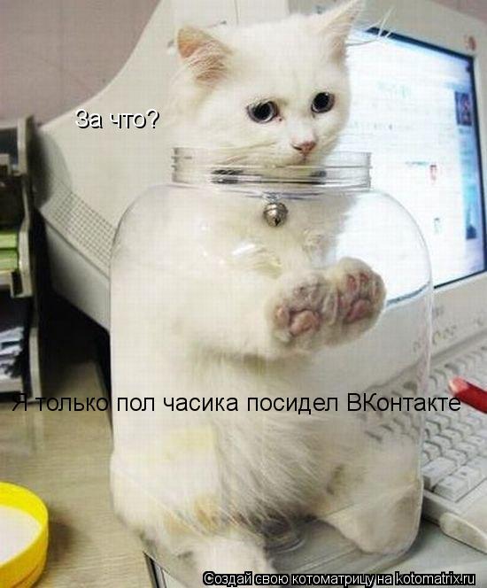Котоматрица: За что? Я только пол часика посидел ВКонтакте