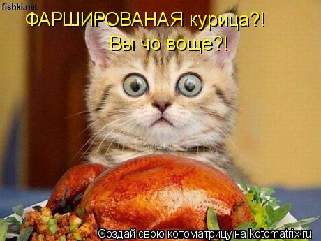 Котоматрица: ФАРШИРОВАНАЯ курица?! Вы чо воще?!