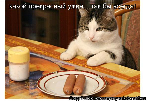Котоматрица: какой прекрасный ужин... так бы всегда!