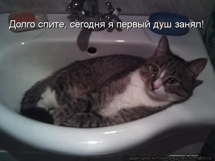 Котоматрица: Долго спите, сегодня я первый душ занял!