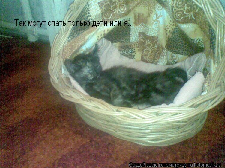 Котоматрица: Так могут спать только дети или я...