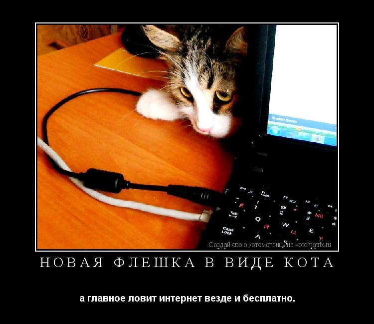 Котоматрица: Новая флешка в виде кота а главное ловит интернет везде и бесплатно.