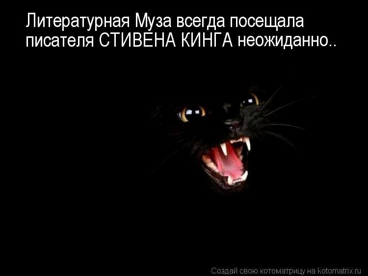 Котоматрица: Литературная Муза всегда посещала  писателя СТИВЕНА КИНГА  неожиданно..