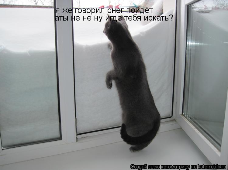 Котоматрица: я же говорил снег пойдёт  аты не не ну игде тебя искать?