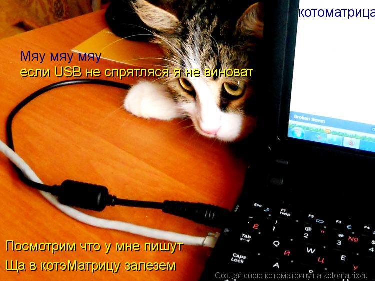 Котоматрица: Мяу мяу мяу если USB не спрятляся я не виноват Ща в котэМатрицу залезем  Посмотрим что у мне пишут котоматрица
