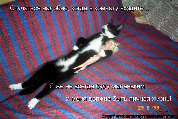Котоматрица: Стучаться надобно, когда в комнату входите... Я же не всегда буду маленьким... У меня должна быть личная жизнь!