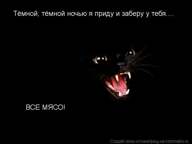 Котоматрица: Тёмной, тёмной ночью я приду и заберу у тебя.... ВСЕ МЯСО!