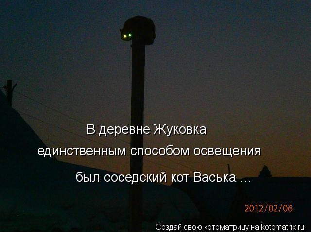 Котоматрица: В деревне Жуковка  единственным способом освещения был соседский кот Васька ...