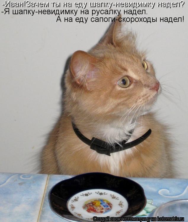 Котоматрица: -Иван!Зачем ты на еду шапку-невидимку надел? -Я шапку-невидимку на русалку надел. А на еду сапоги-скороходы надел!