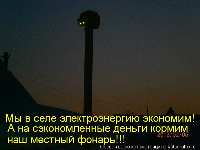 Котоматрица: А на сэкономленные деньги кормим Мы в селе электроэнергию экономим! наш местный фонарь!!!
