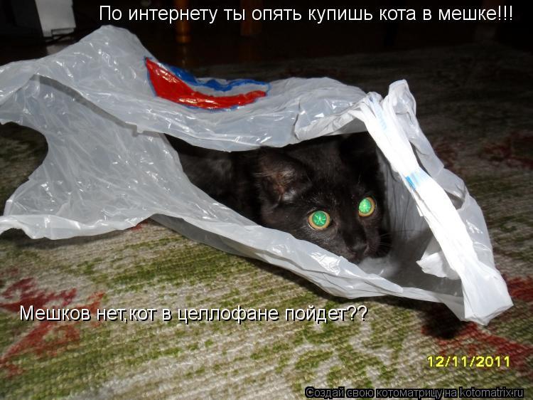 Котоматрица: Мешков нет,кот в целлофане пойдет?? По интернету ты опять купишь кота в мешке!!!