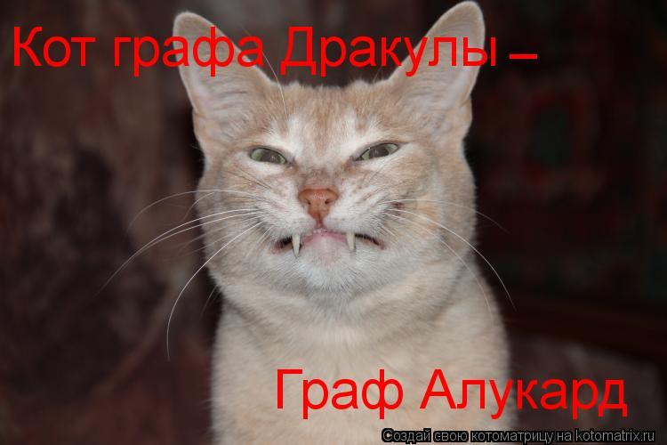 Котоматрица: Кот графа Дракулы Граф Алукард - -
