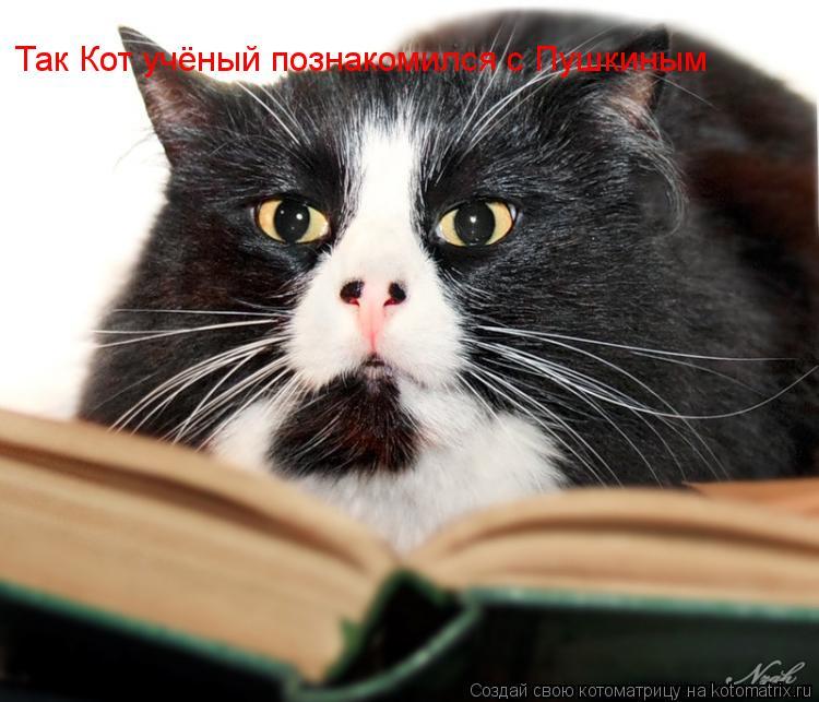 Котоматрица: Так Кот учёный познакомился с Пушкиным