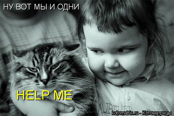 Котоматрица: НУ ВОТ МЫ И ОДНИ HELP ME
