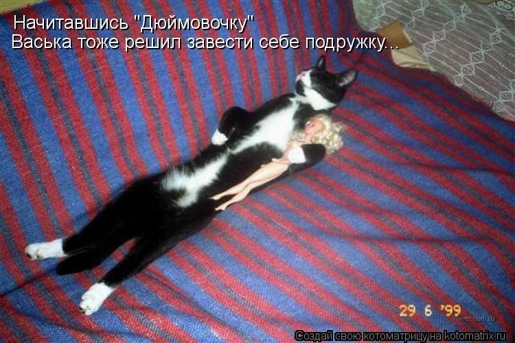 """Котоматрица: Начитавшись """"Дюймовочку"""" Васька тоже решил завести себе подружку..."""