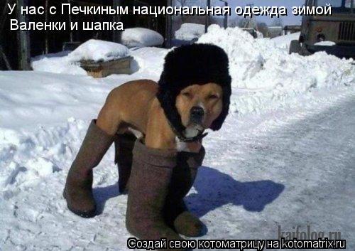 Котоматрица: У нас с Печкиным национальная одежда зимой Валенки и шапка