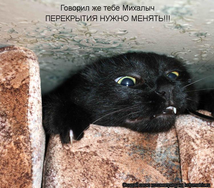 Котоматрица: Говорил же тебе Михалыч  ПЕРЕКРЫТИЯ НУЖНО МЕНЯТЬ!!!