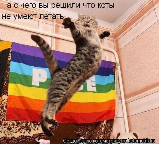 Котоматрица: а с чего вы решили что коты  не умеют летать
