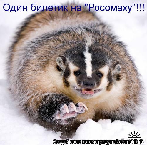 "Котоматрица: Один билетик на ""Росомаху""!!!"