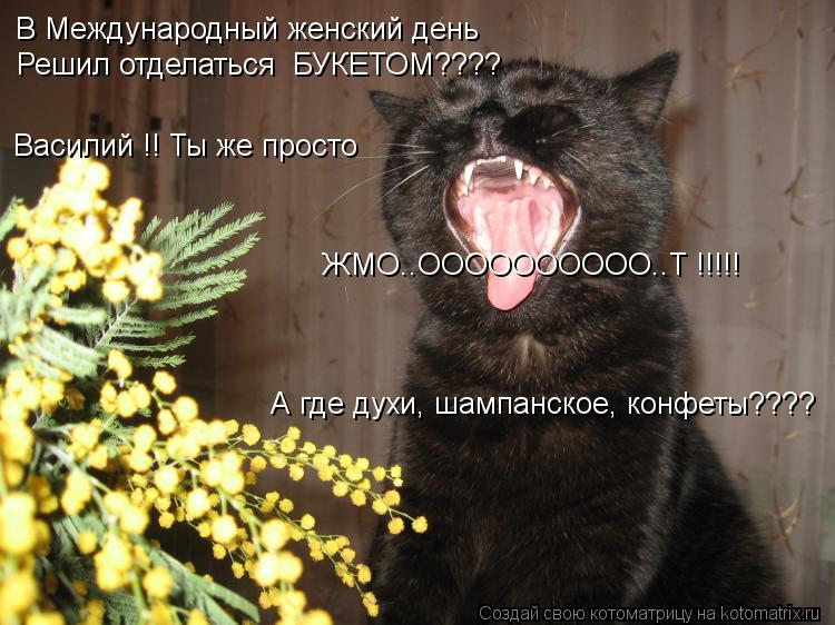 Котоматрица: В Международный женский день Василий !! Ты же просто ЖМО..ОООООООООО..Т !!!!! Решил отделаться  БУКЕТОМ???? А где духи, шампанское, конфеты????