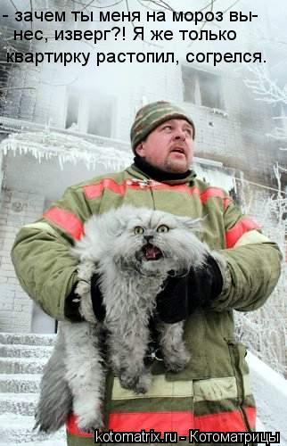 Котоматрица: - зачем ты меня на мороз вы- нес, изверг?! Я же только  квартирку растопил, согрелся.