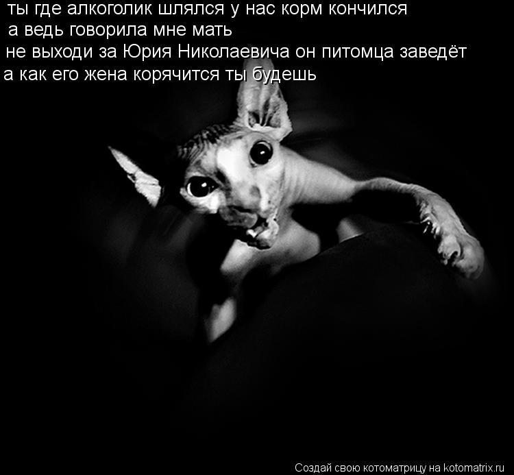 Котоматрица: ты где алкоголик шлялся у нас корм кончился а ведь говорила мне мать не выходи за Юрия Николаевича он питомца заведёт а как его жена корячит