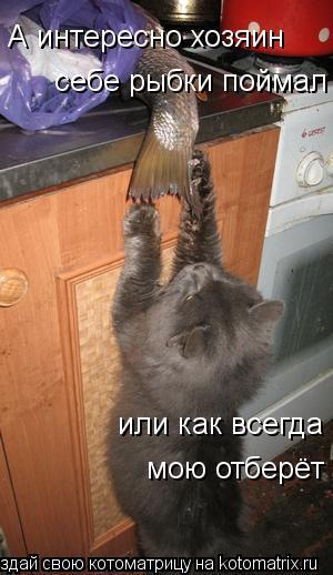Котоматрица: А интересно хозяин себе рыбки поймал или как всегда  мою отберёт