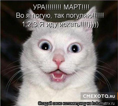 Котоматрица: УРА!!!!!!!! МАРТ!!!! Во я погую, так погуляю!!!!!! 1,2,3 Я иду искать!!!!)))))