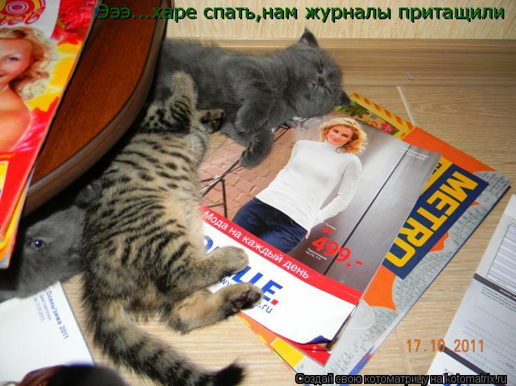 Котоматрица: Эээ...харе спать,нам журналы притащили