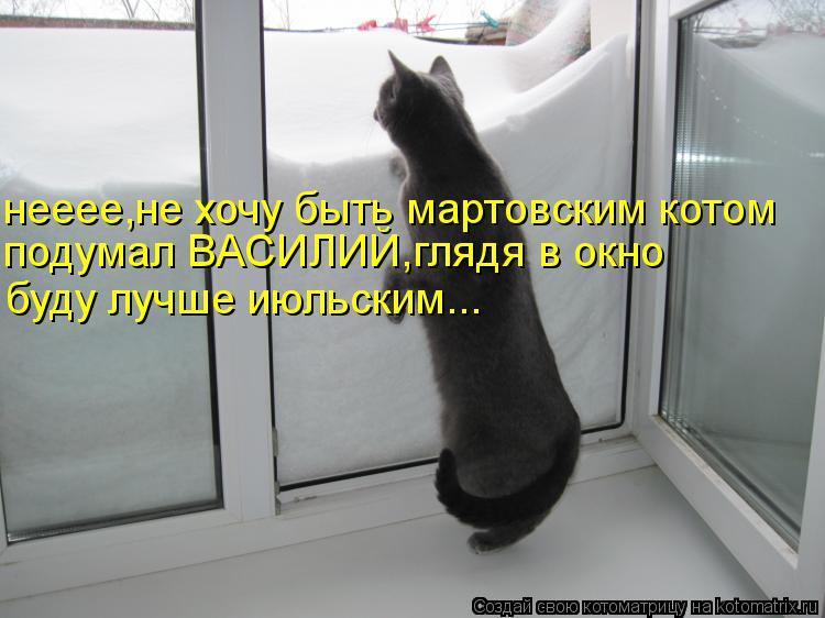 Котоматрица: нееее,не хочу быть мартовским котом подумал ВАСИЛИЙ,глядя в окно буду лучше июльским...