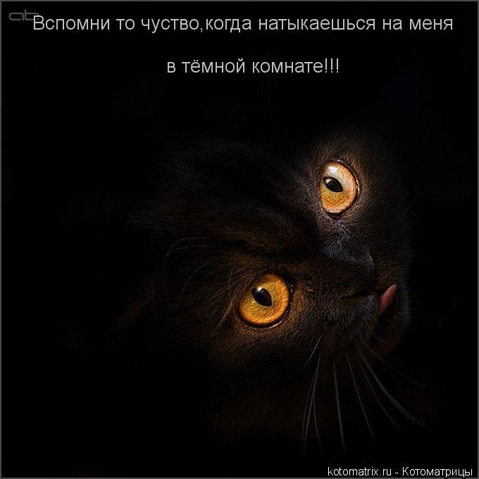 Котоматрица: Вспомни то чуство,когда натыкаешься на меня в тёмной комнате!!!