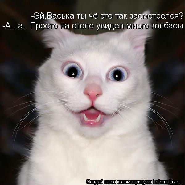 Котоматрица: -Эй,Васька ты чё это так засмотрелся? -Эй,Васька ты чё это так засмотрелся? -А...а.. Просто на столе увидел много колбасы