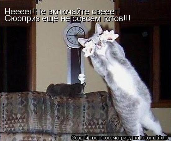 Котоматрица: Неееет!Не включайте свееет! Сюрприз ещё не совсем готов!!!