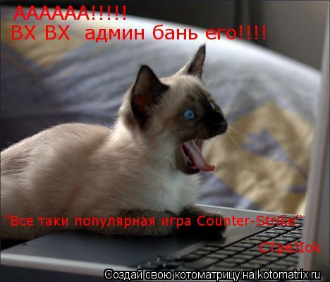 "Котоматрица: АААААА!!!!! ВХ ВХ  админ бань его!!!! ""Все таки популярная игра Counter-Strike"" СTpeJIok"