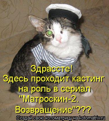 """Котоматрица: Здрассте! Здесь проходит кастинг на роль в сериал """"Матроскин-2. Возвращение""""???"""